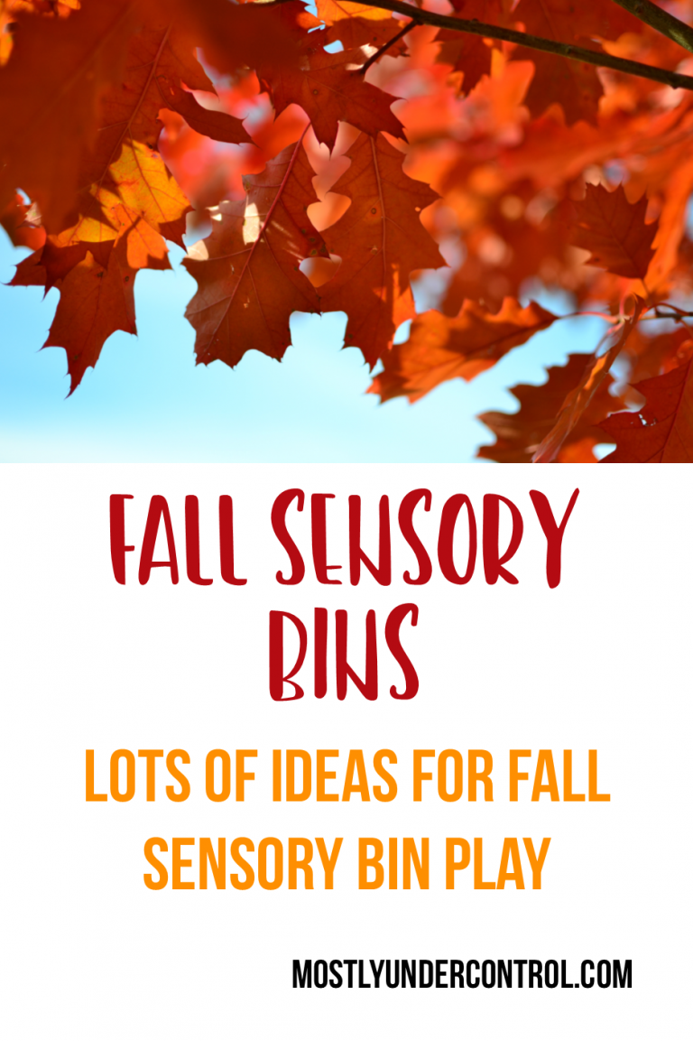 Fall Sensory bin ideas - Looking for seasonal sensory bin ideas? This post is full of sensory bin ideas. #sensoryplay #fallsensoryplay #fallsensory #fallplay #indoorfallplay #seasonalsensorybins